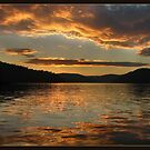 Golden sunset at Ku-ring-gai waters by Alexey Dubrovin