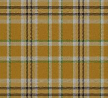 02847 Smith County, Texas Efficial Fashion Tartan Fabric Print Iphone Case by Detnecs2013