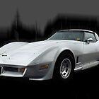 '81 Corvette Stingray by Glenn Bumford