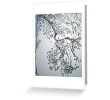 Beautiful Elm Branch Greeting Card