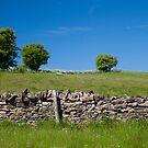 Cotswold wall by Jeff  Wilson