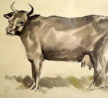 The cow by Sue Anderson