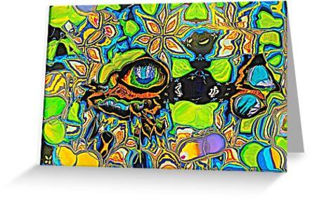 The eye knows all by Carolyn Clark