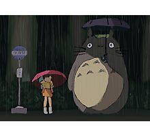 Totoro Rain scene Photographic Print