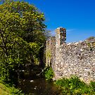 St Davids Abbey Walls by mlphoto