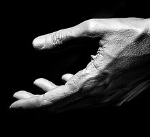 Hand by Fern Blacker