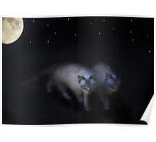Nightstalkers Poster