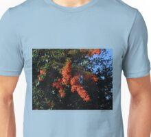 Strange Phenomenon Unisex T-Shirt