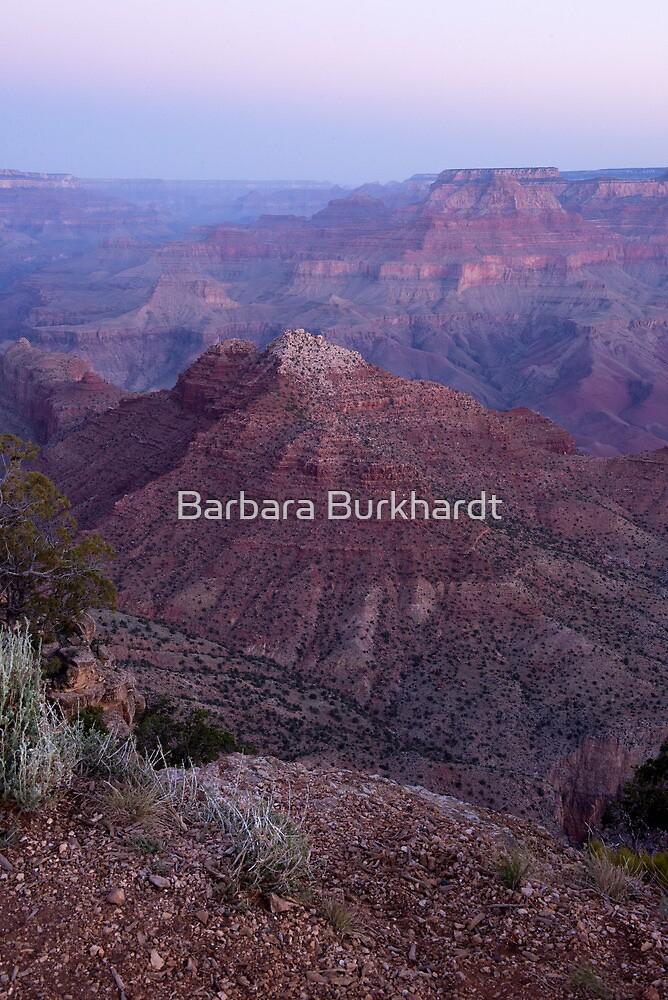 Pre Dawn - Grand Canyon by Barbara Burkhardt