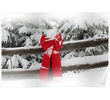 Winter Wonderland - British Columbia Canada Poster