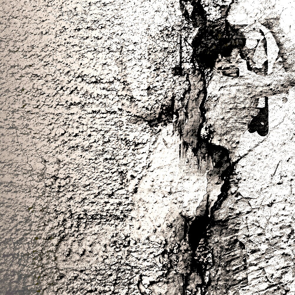 APPEARING IN PLASTER by Thomas Barker-Detwiler