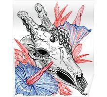 Amorphophallus Titanum Poster