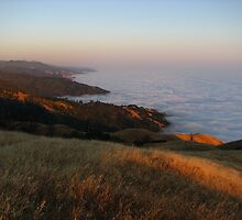Big Sur Sunset, Timber Top, Ventana Wilderness, CA 2013 by J.D. Grubb