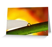 Heart of Flame Greeting Card