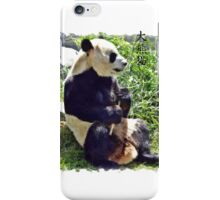 Cute Giant Panda Bear with tasty Bamboo Leaves iPhone Case/Skin