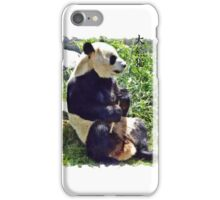 Cute Giant Panda Bear with tasty Bamboo Leaves iPhone Case/Skin