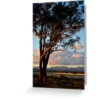 Sunset view of Nandewar Range Greeting Card