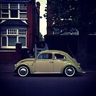 volkswagen beetle by Tony Day