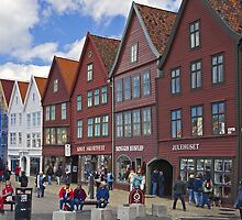 Bergen beauty by Steve plowman