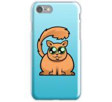 Ginger Cat iPhone Case/Skin