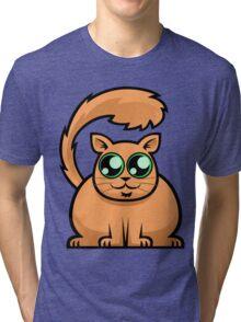 Ginger Cat Tri-blend T-Shirt