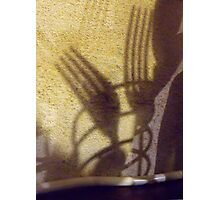 261/365 shadow tines Photographic Print