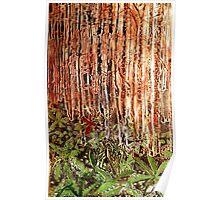 Rain Forest Dusk Poster