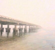 Manatee Mist by Richard Darcy