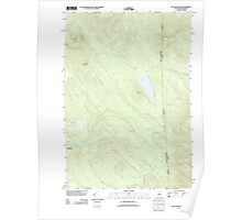 USGS TOPO Map New Hampshire NH Success Pond 20120508 TM Poster
