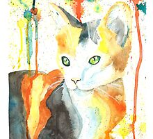 Donna's Cat by Melody Hall-Fuller