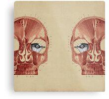 CANTO DE GOLONDRINAS COMO METAL CRUDO (vr.3) Metal Print