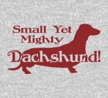 Mighty Dachshund by flobaby