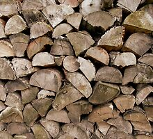Stacked Log Pile by Fay Freshwater