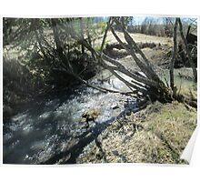 creekside  Poster