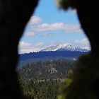 Knot Hole View by © Betty E Duncan ~ Blue Mountain Blessings Photography
