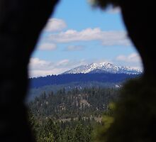 Knot Hole View by Betty  Town Duncan