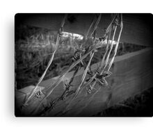 Barbed Wire - British Columbia Canada Canvas Print