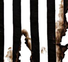 battle worn stripes Sticker