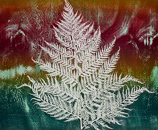 Printmaking: Forthcoming Fern by Marion Chapman
