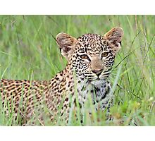 Hiding in the long grass! Photographic Print