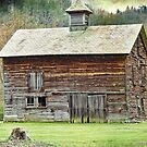 This old barn by vigor