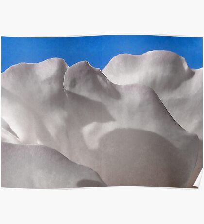 The Cloud of Roses Poster