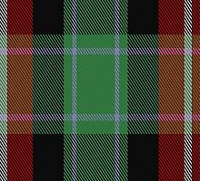 02858 Entre Rios Province (Provisional) District Tartan Fabric Print Iphone Case by Detnecs2013