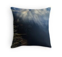 Creek Abstract Throw Pillow