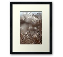 Pure Morning II Framed Print