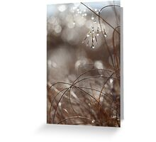 Pure Morning II Greeting Card