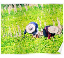 Tending the crops  Poster