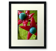 Rising Stars of the Oregon Stage Framed Print