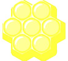 honeycoma Photographic Print