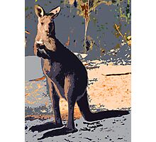 ROLLIE ROO Photographic Print